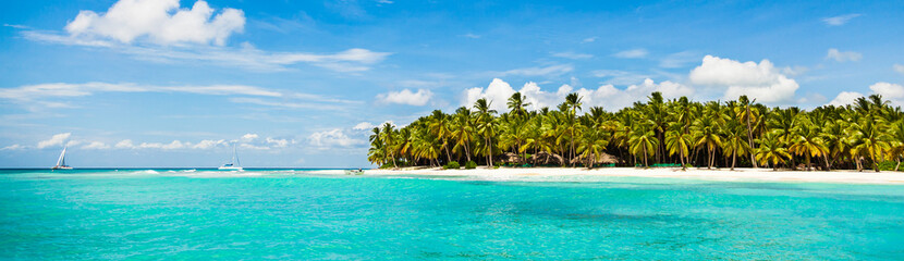 Beautiful tropical beach with white sand, coconut trees and turquoise sea water of the Caribbean on an island in the Dominican Republic. Paradise island for travel and recreation. Panorama copy space