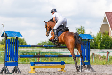 Young male horse rider on show jumping competition