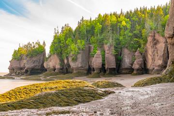 Formacje skalne w Hopewell Rocks Park, New Brunswick