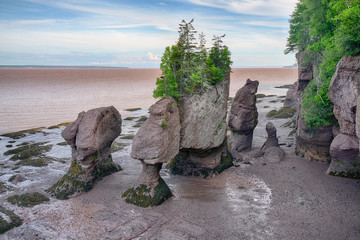 Rock Formations in Hopewell Rocks Park, New Brunswick