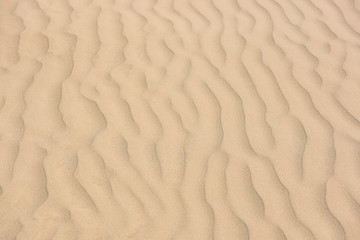 Wind made sand pattern in beach.