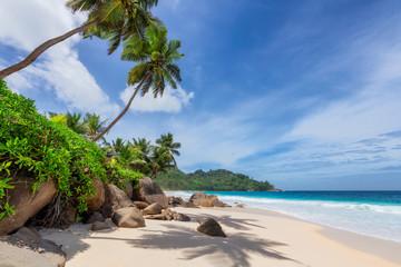 Słoneczna plaża z palmami i turkusowym morzem na Seszelach. Letnie wakacje i koncepcja tropikalnej plaży.
