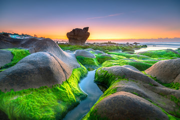 Strange stones covered moss and seaweed welcomes dawn  beautiful new day