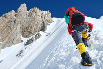 Climber reaches the summit of Everest. National Park, Nepal.