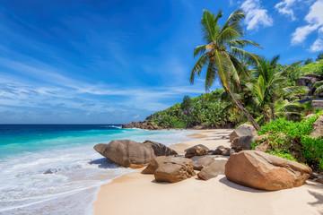 Egzotyczna słoneczna plaża i palmy kokosowe na Seszelach. Letnie wakacje i koncepcja tropikalnej plaży.