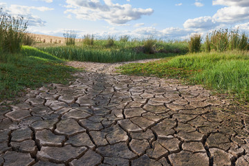 cracked dirt of a dry creek passing through a green field under a cloudy blue sky.