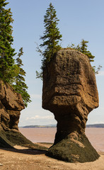 Flower pot sandstone rock structures at low tide, Hopewell Cape on the Bay of Fundy.