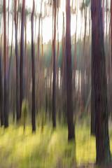 las abstrakcja rozmycie