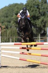 Schwarzes Pferd über Steilsprung