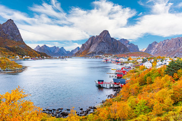 Reine Fishing Village In Lofoten Islands Norway