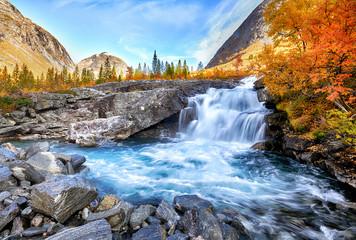 Piękny jesień krajobraz z żółtymi drzewami i siklawą