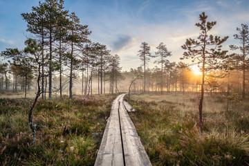 Sceniczny widok od bagna z drewnianą ścieżką i pięknym wschodem słońca przy jesień rankiem w Finlandia
