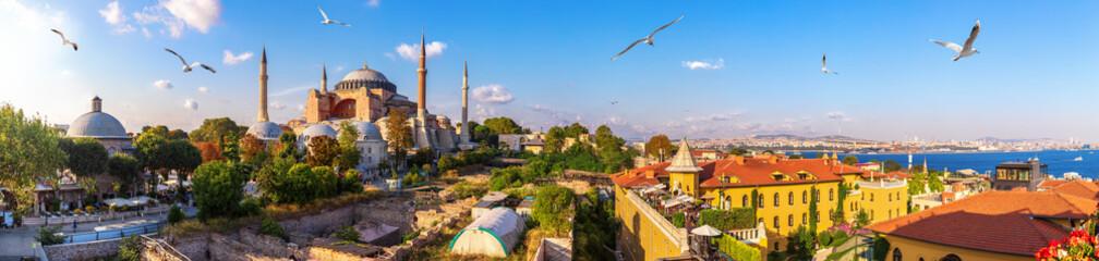 Hagia Sophia, stara turecka łaźnia turecka i Bosfor, piękna panorama Stambułu