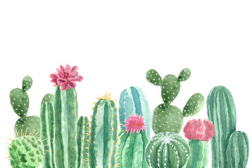 Watercolor Cacti and Succulents