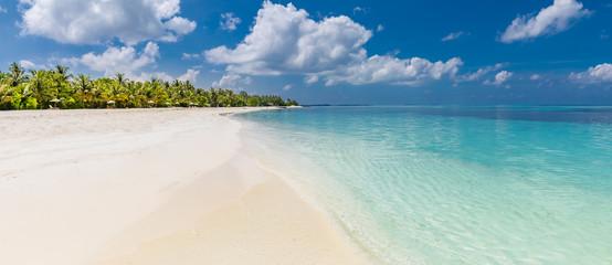 Luksusowa miejscowość nadmorska z palmami na białym piasku, tropikalnym wyspy tle, wakacje pojęciu, wakacje i turystyka projekcie ,. Egzotyczny krajobraz, inspirujący transparent czasu wolnego