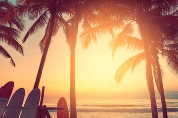 Deska surfingowa i palmy na tle plaży.