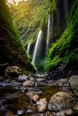 Madakaripura siklawa na Jawa, Indonezja