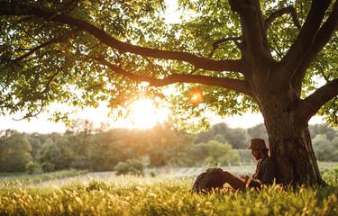 Hiker using smartphone under tree