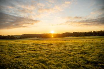 Ciel nuageux lever de soleil nature prairie