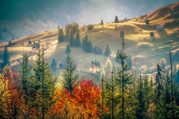 Beautiful landscape mountain hill meadow sunrise morning village Bucovina Romania