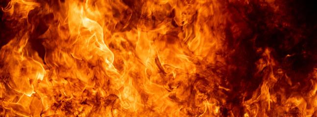 Zamyka w górę gorącego pożarniczego płomienia pali jarzyć się jarzyć się na czarnym ciemnym tle