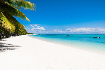Tropical scenery - beautiful beach with blue ocean and clear sky of Mauritius island