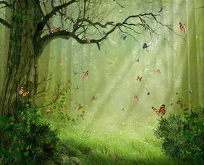 Magiczny las. Fotomanipulacja. Renderowanie 3D.