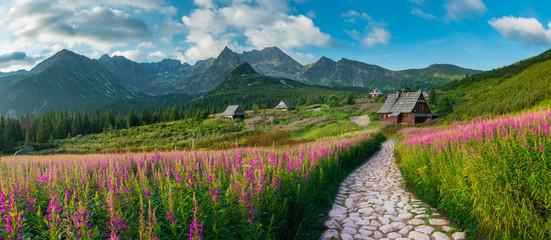 górski krajobraz, panorama Tatr, Polska kolorowe kwiaty i domki w dolinie Gąsienicowej (Hala Gasienicowa), lato