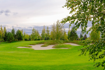 Landscape. Golf course with trees, shrubs.