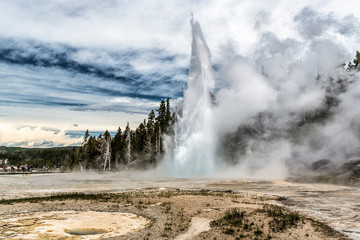 Hot springs and geyser basin landscape at Yellowstone National Park