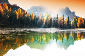 Jezioro z odbiciem góry przy wschodem słońca w jesieni w dolomitach, Włochy. Krajobraz z jeziorem Antorno, niebieską mgłą nad wodą, drzewami z pomarańczowymi liśćmi i wysokimi skałami jesienią. Kolorowy las