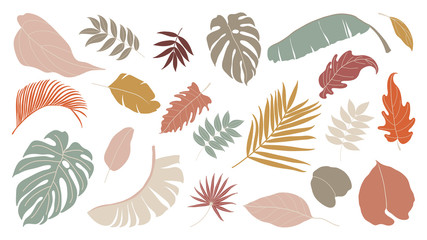 Set of abstract tropical leaves.   Abstract botanical element collection with Earth tone color. Design for natural and floral background pattern, cards and packaging, cosmetics, spa, beauty care.
