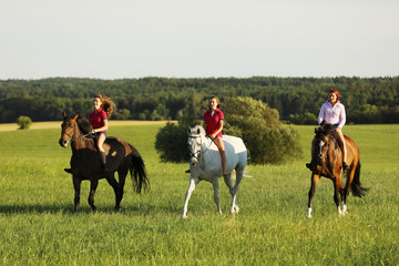 Teenage girls on horse walking on meadow in afternoon without saddle