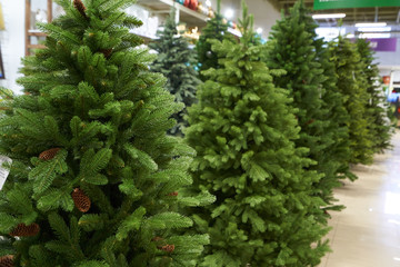 The sale of a variety of artificial Christmas trees of green color a range in the shop decor