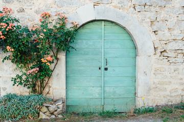 une vieille porte en bois bleu vert et un rosier grimpant