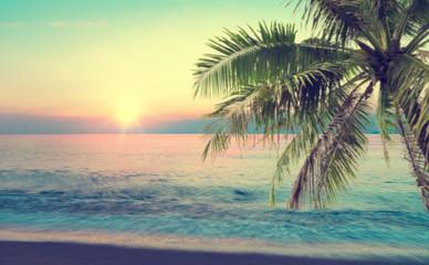 lato morze z palmą o zachodzie słońca i kopiować miejsca, koncepcja relaks niebo, piękne tropikalne tło dla krajobrazu podróży