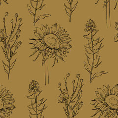 Oil plants seamless pattern with plants sketches: linseed, sunflower and rapeseed. Vector background. Healthy food, bio, organic, natural product