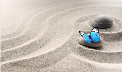 zen garden meditation stone background and butterfly with stones and lines in sand for relaxation balance and harmony spirituality or spa wellness