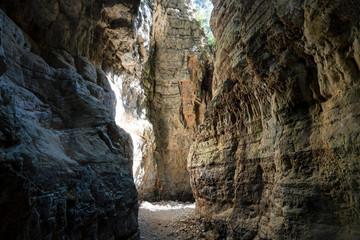 In der Imbros-Schlucht, Kreta