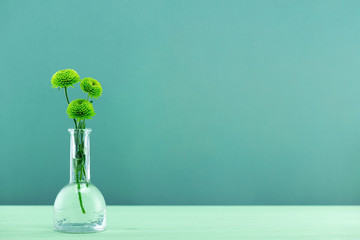 Background with tree green chrysanthemum in the glass bottle on the green table