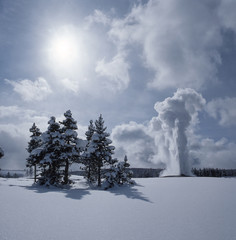 Old Faithful in winter;  Yellowstone NP;  Wyoming