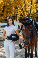 Equestrian sport concept, female jockey and horse in autumn forest, ready for a competition.