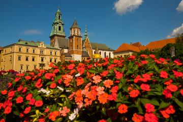 Piękne zwiedzanie Zamku Królewskiego na Wawelu i kolorowe kwiaty w Krakowie