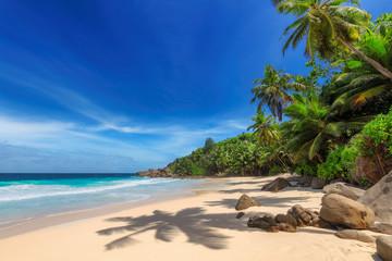 Tropikalna słoneczna plaża i palmy kokosowe na Seszelach. Letnie wakacje i koncepcja tropikalnej plaży.
