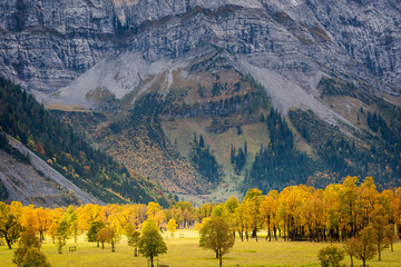 Colorful maple trees in Austrian mountain valley Großer Ahornboden during autumn