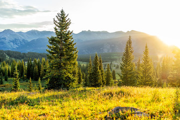 Sunrise sunlight landscape view of San Juan mountains in Silverton, Colorado in 2019 summer morning with meadow valley and spruce trees forest