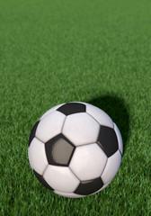 Fußball liegt auf Rasen, Hochformat