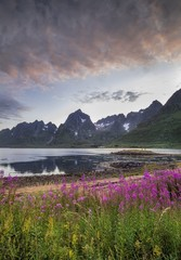 Vertical shot of the flower covered beach by a lake with the mountains in the background