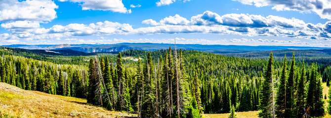 Panorama View from Mt. Washburn Outlook on the Grand Loop Road in Yellowstone National Park, Wyoming, United States