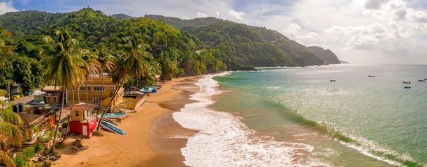 Piękna tropikalna wyspa Barbados. Widok na złotą plażę z palmami i krystalicznie czystą wodą. Idealne tło wakacje.